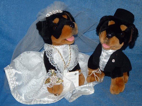 Rottweiler Bride & Groom