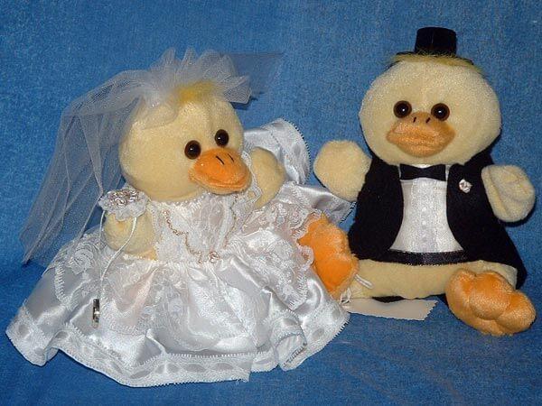 Duck Bride & Groom