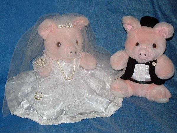Pigs Bride & Groom